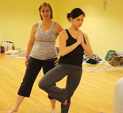Yoga Teacher Training - 200 hr.